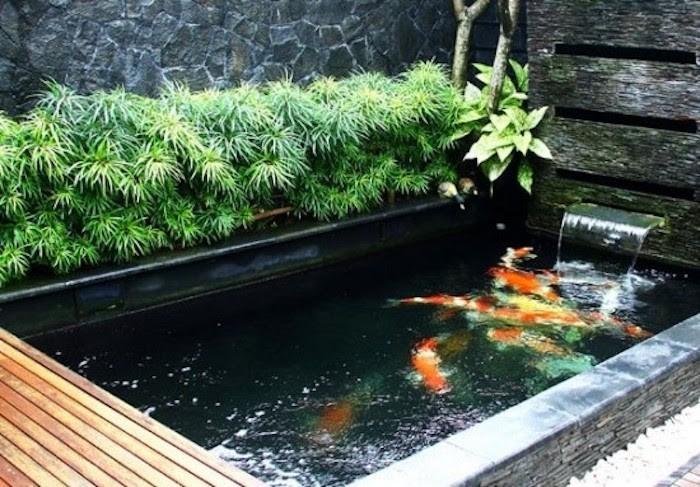 Chọn vị trí thích hợp để xây hồ cá Koi
