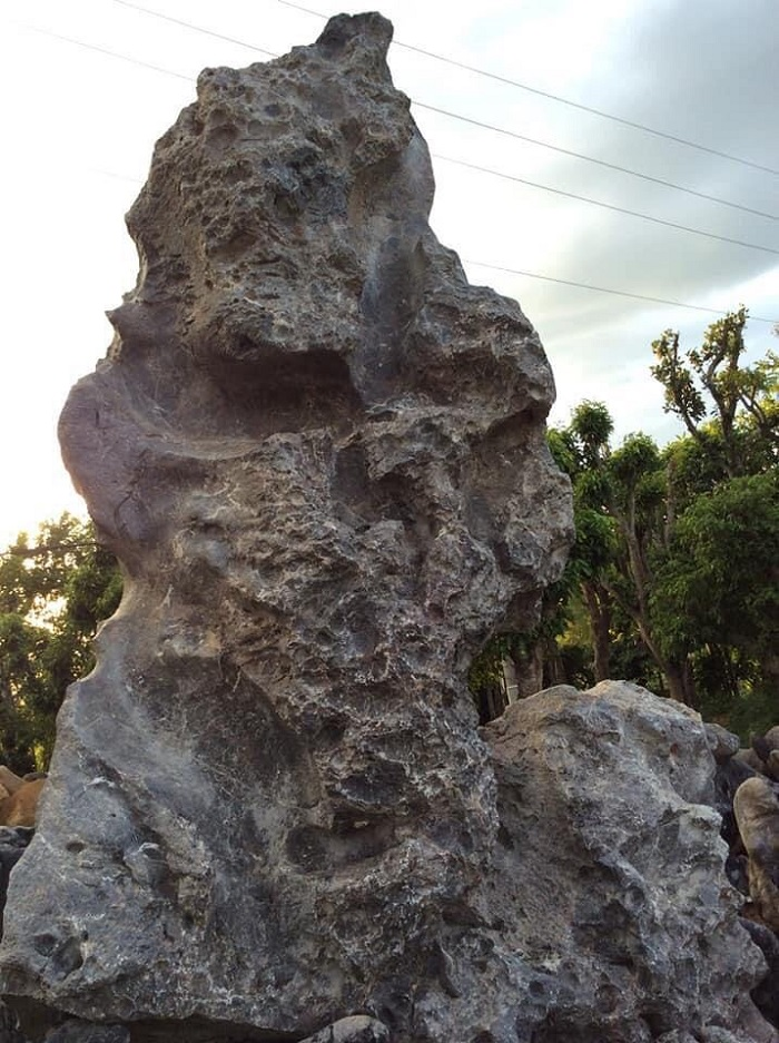 Thông tin sản phẩm đá da voi
