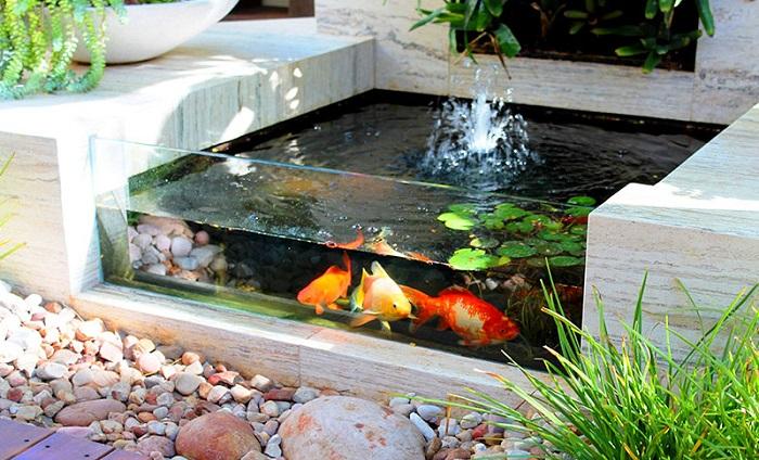 Khó cưỡng với hồ cá Koi mini trên sân thượng