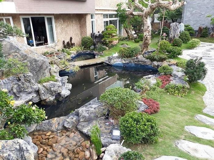 Mẫu hồ nuôi cá Koi trong sân vườn