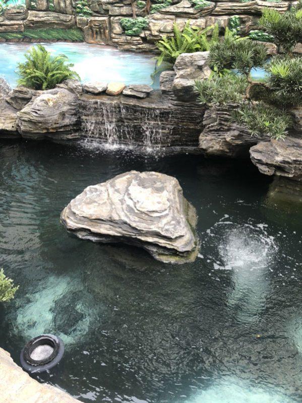 Hút mặt hồ cá koi
