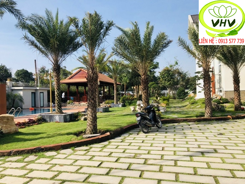 Thi công sân vườn nhà chú Châu Đồng Nai